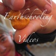 Earthschooling Videos