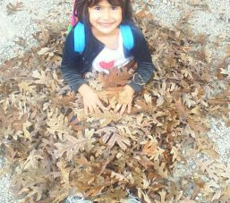 Sofi buried in leaves