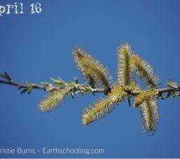 April B16A