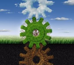 26171404 - connected environment nature concept and renewable energy metaphor as roots tree plant and clouds shaped as a group of gears and cogs working together as a symbol of industry networking cooperation
