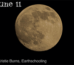 June 11 LY 6_res