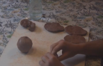 G9 Embryology and Clay Work