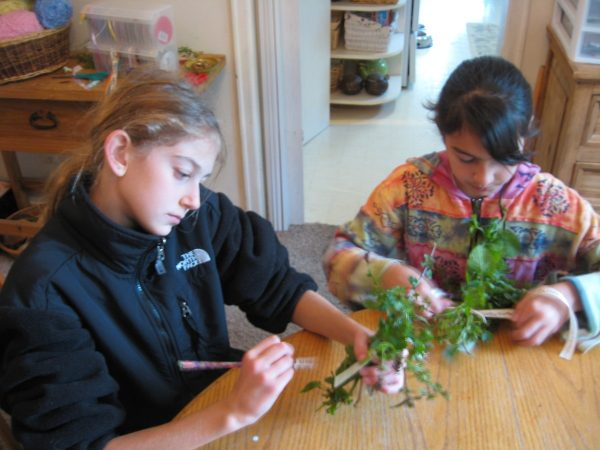 Fifth Grade Waldorf Earthschooling Curriculum