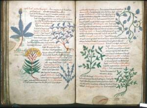 101: History of Greek, Roman and Arab Medicine