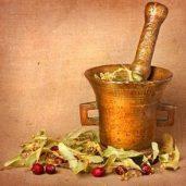 909: Herbal Preparations