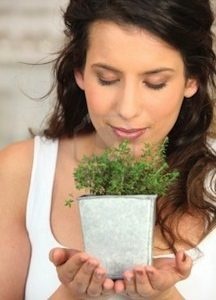 Herbs for Women