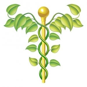 Naturopathic Series Payment Plan