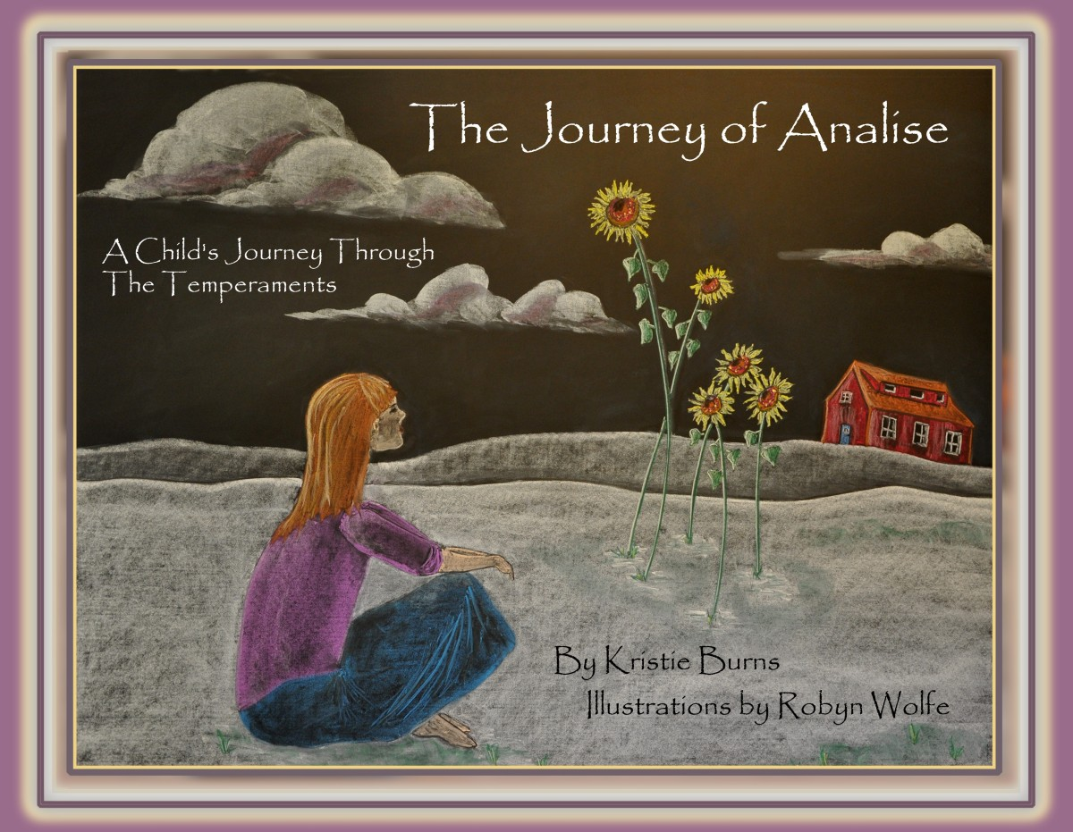 Book: The Journey of Analise with International Shipping
