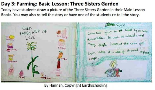 Third Grade Block One: Farming, Form Drawing & More