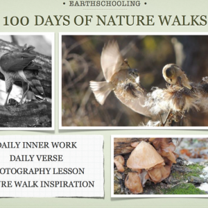 100 Days of Nature Walk Adventures