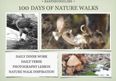100 Days of Nature Walk Adventures