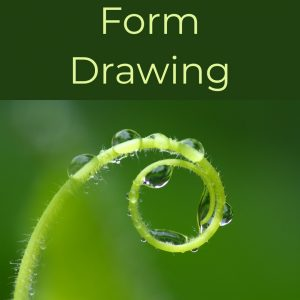 Form Drawing Blocks
